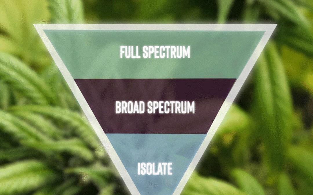 What is the CBD Spectrum?