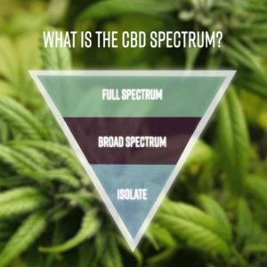 CBD Livity - what is the full spectrum?