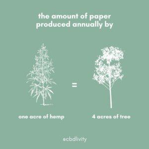 CBD Livity - Hemp paper