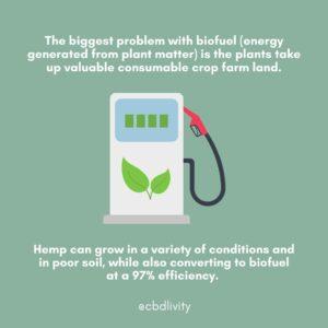 CBD Livity - Biofuel
